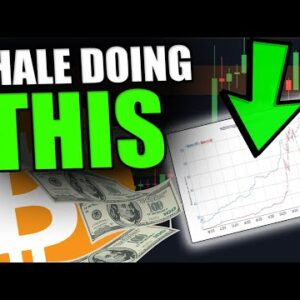 YOU WILL NOT BELIEVE WHAT THIS BITCOIN WHALE JUST DID! [$58,000,000 SOLD]