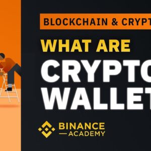 What are Crypto Wallets|Explained for beginners