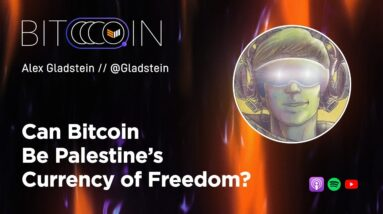 Can Bitcoin Be Palestine's Currency of Freedom? with Alex Gladstein - Bitcoin Spaces